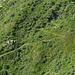Il sentiero che sale meno diretto passando da Vantarone e dall'Alpe Voièe