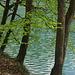 am Staufensee