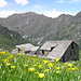 Alpe Vasnera