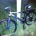 Für die letzte Etappe wartet mein braves Bike - schneebedeckt!