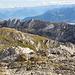 Impressionen südliche Hauptkette: Blick vom Moor auf den Gätterifirst