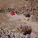 Campo morena du Pisco (4900m)