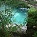 smaragdgrünes Wasser im Urwald