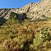 der dunkle Schatten in der Bildmitte unten ist der Weg, oben erkennt man die ersten Felsen und links davon kann man die offene Rinne erahnen