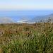 Blick nach Hout Bay