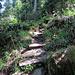 noch ein paar Treppen bevor man das Wasser erreicht