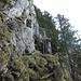Steile Passage im Aufstieg zum Vitznauerstock