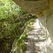 Natürliche Galerie auf dem Sentier des Echelles über Frinvilliers