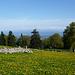 Immer noch Panorama und abendliche Ruhe auf den Montagnes de Romont