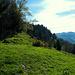 Am Kamm entlang wandert man nun gemütlich hinüber zum Gipfel des Hittisberges ...