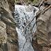 Der Jolibach führt nach den Regentagen wieder mehr Wasser