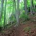 Ziemlich steiler Aufstieg zum Hohenstein