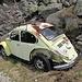 der Bruder von Herbie