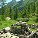 Alpe Loccia, Blick zum Pizzo del Rovale