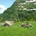 Alpe di Camona