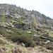 Ambiente dell'alpe di Laor