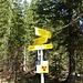 Hier nehme ich den linken Weg zum Breitenberg und nicht den angeschriebenen