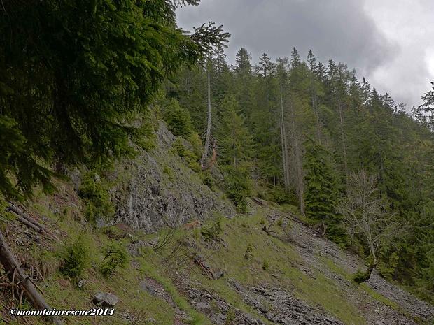 Steil schwingt sich der Weg zur Ennstalerhütte