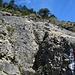 hier ist der Einstieg auf die Felsplatte, der offizielle Bergweg führt rechts um die Platte herum