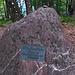 Bürglensturz, der höchste Punkt der Albiskette