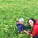 in der Blumenwiese macht's Spaß!