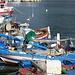 der Fischerhafen San Vito Lo Capo