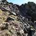 im oberen Abschnitt herrscht vorwiegend blockiges Gelände; teilweise steil