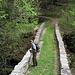 eine erste Steinbrücke über das Tal