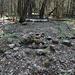 Гара Лысая / Hara Lysaya - Hier gibt's zwar keine Aussicht, dafür aber: Steinmann, Vermessungspunkt und Reste eines Triangulationsgerüstes (Stahlträgerstücke im Boden).