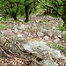 Val Codera - Weg auf der orographisch rechten Talseite