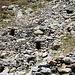 Alpe di Pero - Unterstände in der Geröllhalde