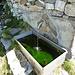 Entlang dem Weg von Alpe Godone zur Alpe Derschen sind Wasserfassungen mit Reservoirs. An einem liegt dieser Brunnen