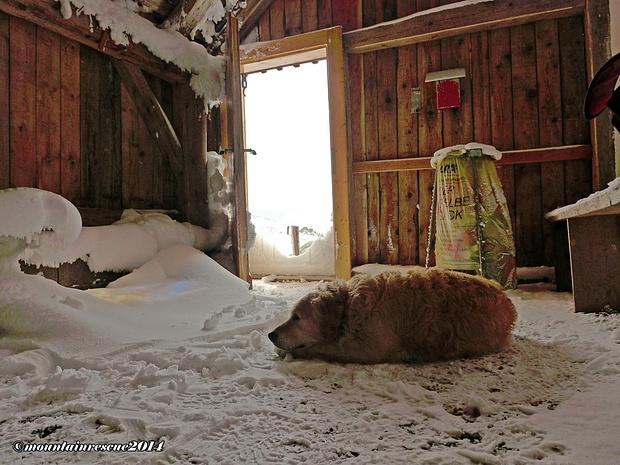 Die Tür des Winterraumes sollte halt' geschlossen bleiben