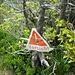 Steilstufe im Abstieg