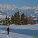 traumhafte Blicke auf die Tannheimer Berge