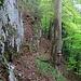 teilweise sehr steile Hänge unterhalb der Felswände 1