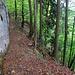 teilweise sehr steile Hänge unterhalb der Felswände 2