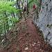 teilweise sehr steile Hänge unterhalb der Felswände 3
