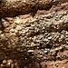 sehr abwechslungsreiches Gestein