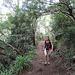 Aufstieg in tropischer Umgebung