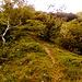 Il sentiero è qui ben marcato. Le difficoltà sono finite e questa zona è spessa battuta da escursionisti in cerca di un posto tranquillo dove prendere il sole.