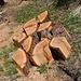 Eine umgestürzte Lärche wird zu Brennholz