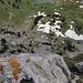 Tiefblick vom Riesenporthorn zum Walopsee