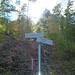 weiter geht's zum Gaisberg, über den Falkentobelweg steigen wir später ab