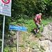 die Spur zur Linken führt im Wald an den WSW-Grat heran ...