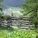 Blick nach Oberwald