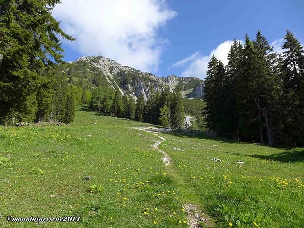 Zuerst geht es relativ sanft den Berg hinauf...