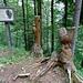 auf dem Skulpturen-Rundweg