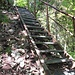 Abstieg zum Chesselbach