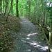 hinauf zur Gesslerburg. Der restaurierte Weg durch die Hohle Gasse verläuft rechts unten.